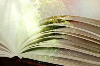 打開小豪這本書